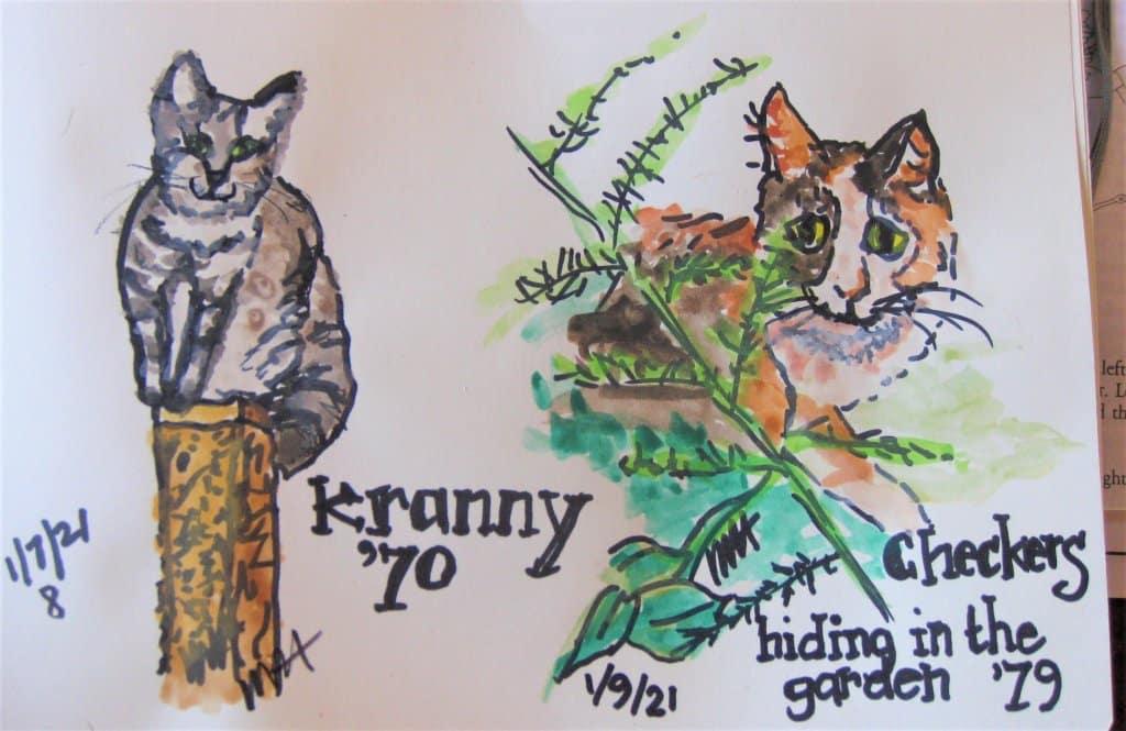 Kitties, always a part of my life Checkers2BeepBeepKitty