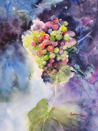 Grapes painting watercolour by Shikha Garg
