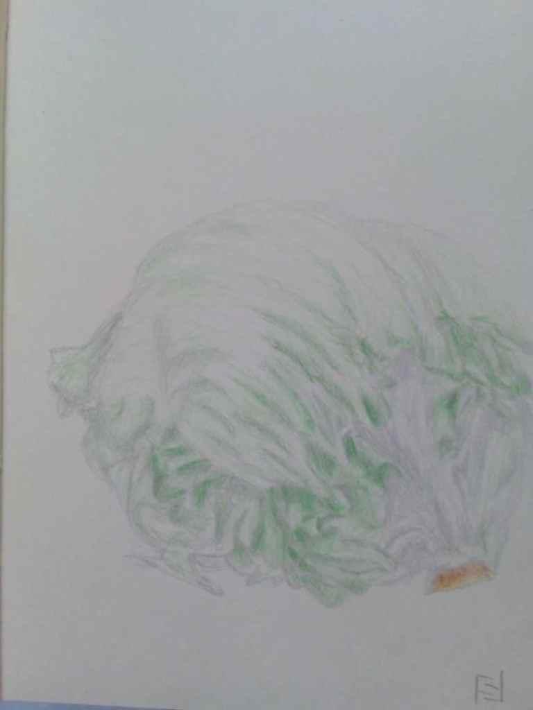05.01.2021 – fresh lettuce IMG_20210105_195838
