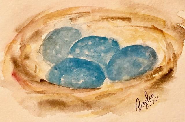 #doodlewashjanuary2021: day 22 eggs IMG_2791
