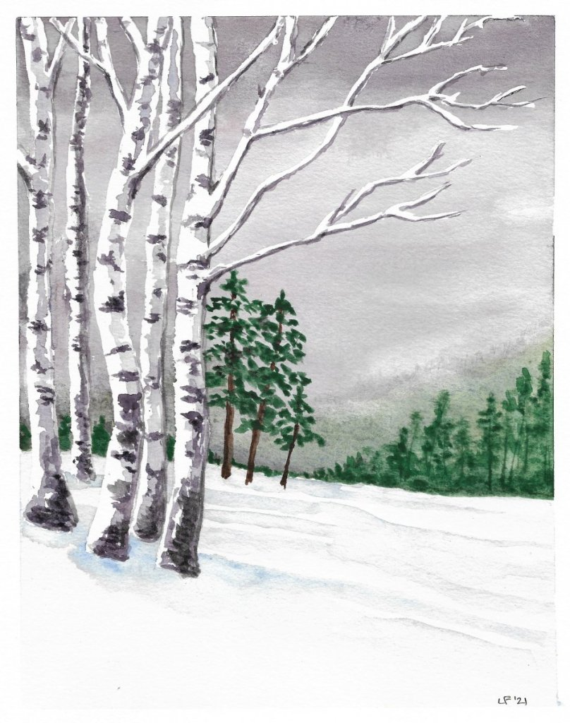 Silver Birch I had to follow a tutorial for this one, I have never painted birch before. Used maskin