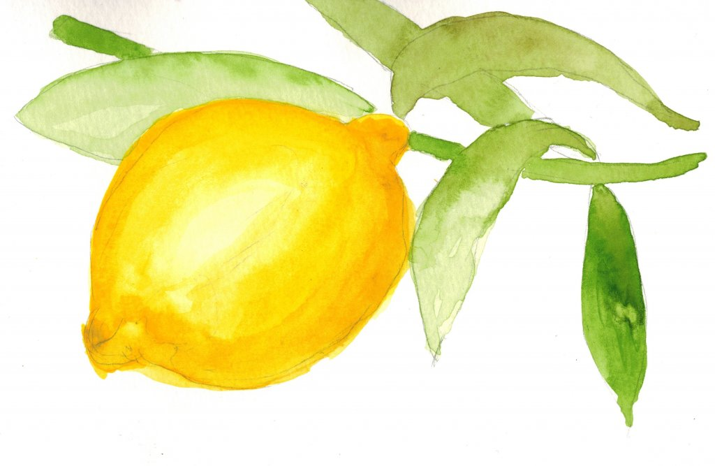 "Exercise number 2 from ""101 Watercolor techniques"". Graduated colors. art101-002-lemon20"