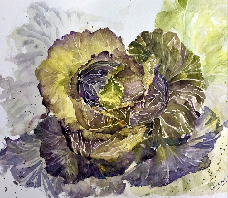 autumn cabbage watercolour painting by Kusum Shabong
