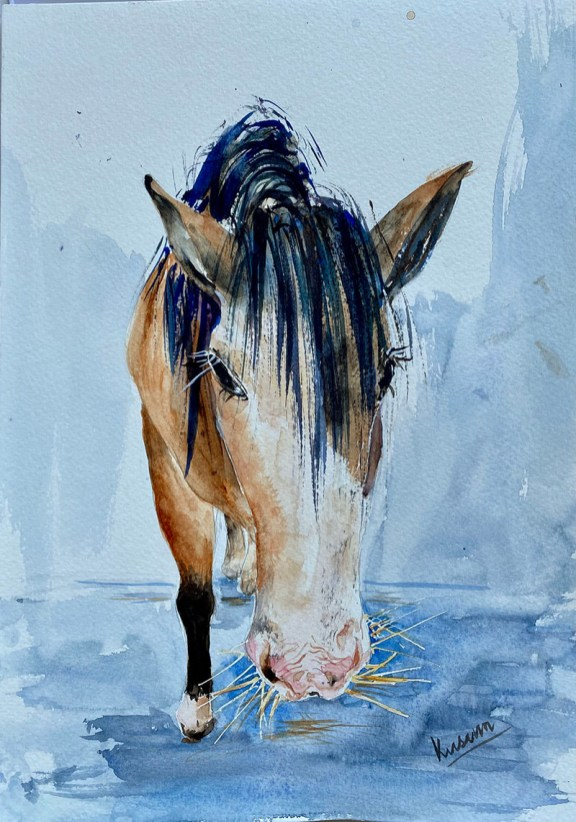 horse perspective watercolour painting by Kusum Shabong