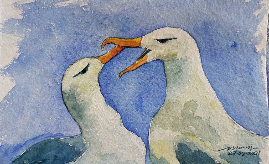 Dt: 27.02.2021 Sub: SEABIRD Watercolor painting on handmade paper inbound5977522008691771454