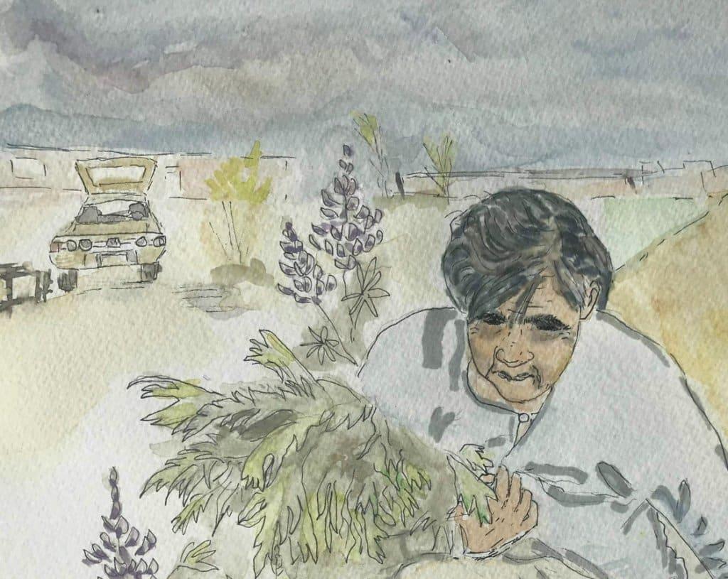 Fedosia Sacaloff, one of our Kenaitze Dena'ina Elders, gathering wormwood(Artemisia). 2C7C94E0-068