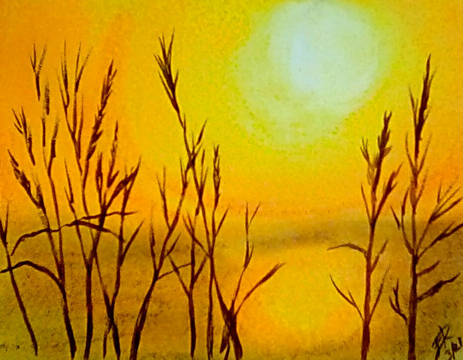 Tomorrow's #Doodlewash challenge sunshine. This time I used pastel chalk and a watercolor pen