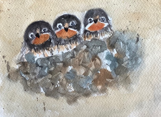 #doodlewashmarch2021 day 5 Nest: The nest of barn swallows is a cup of mud pellets lined with grass