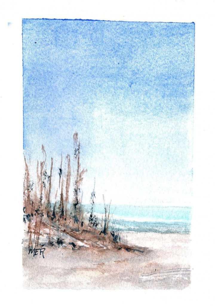 4/7/20 Beach 4.7.21 Beach img001