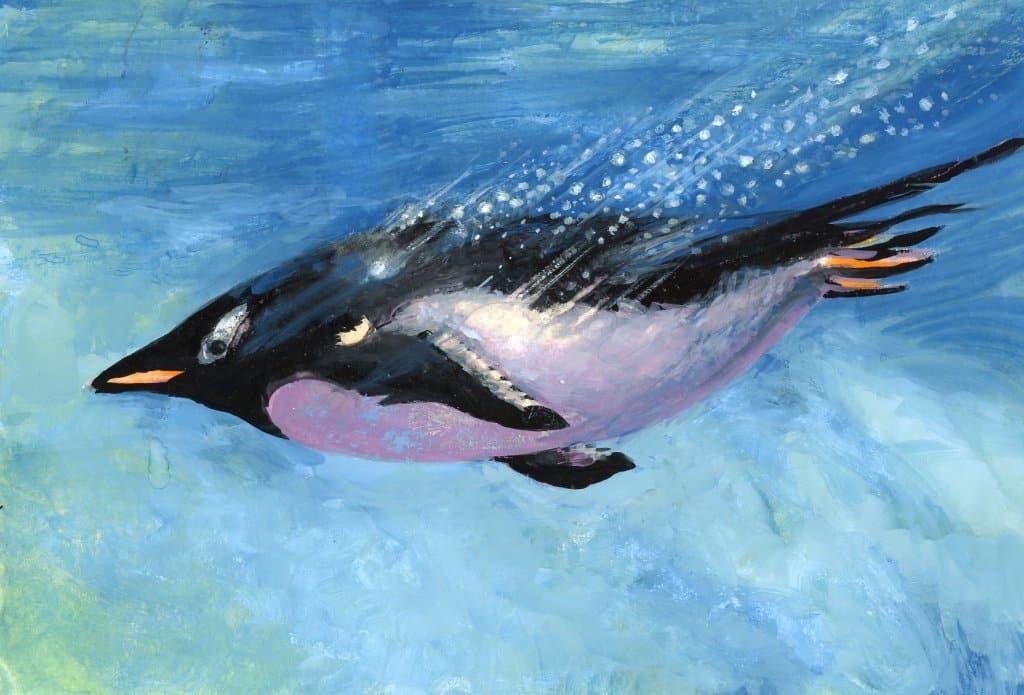 Penguin Diver-Arteza Gouach on Hah nemühle Agave Watercolor paper2
