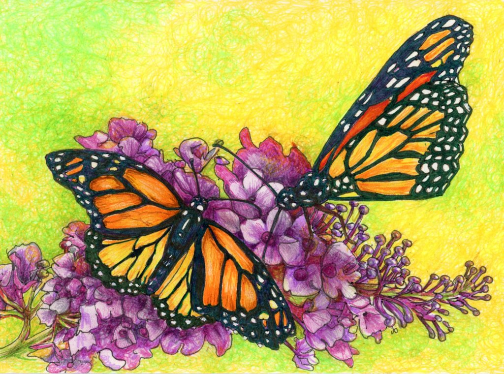 Did you know that Monarch butterflies are famous for their yearly migration, traveling up to 2,000 m