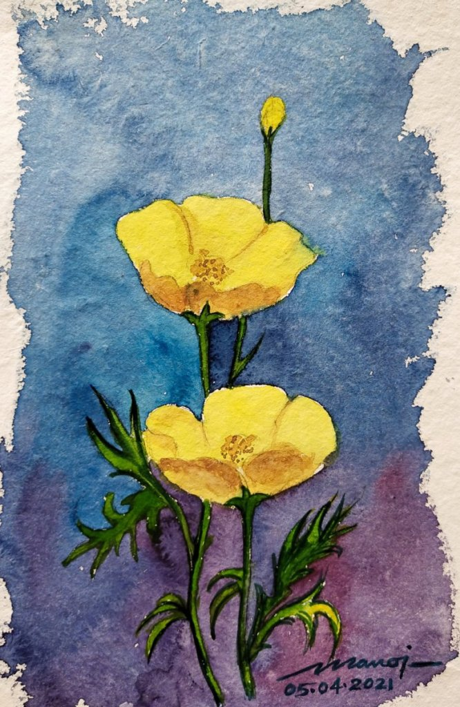 Dt: 05.04.2021 Sub: BUTTERCUP Watercolor painting on handmade paper inbound6520647538460894444