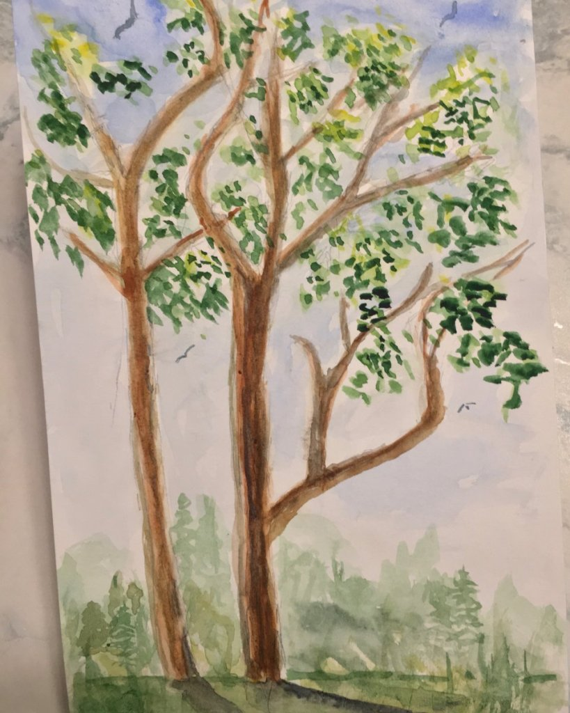 "Day 10 Prompt ""Tree"" sketched from life trees I see from my driveway #doodlewashmay2021 #worldwa"