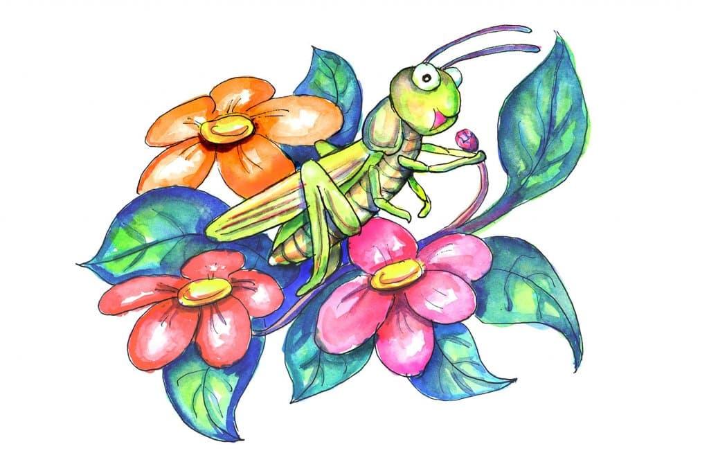 When Crickets Sing