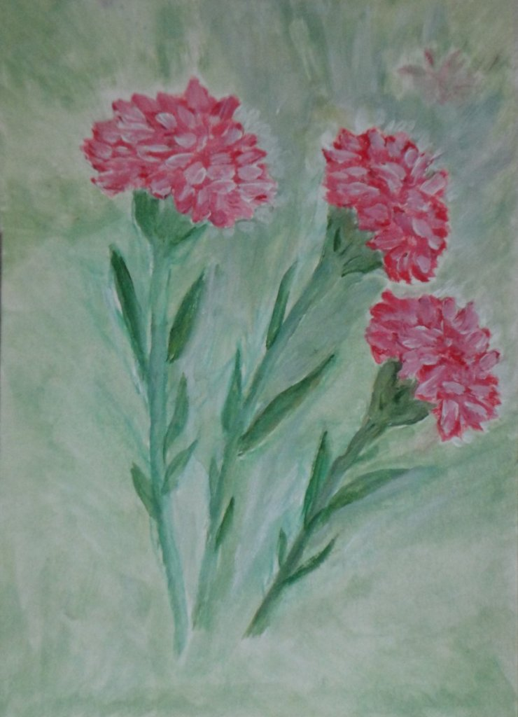 Trio of Carnations in watercolor Trio of Pink Carnations