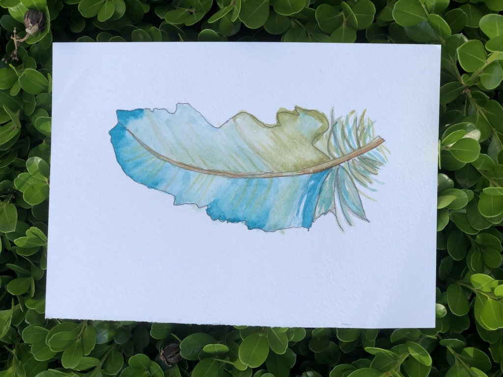 I'm a want-to-be watercolorist! Practicing daily to improve! I tend to overwork my paintings. Hope