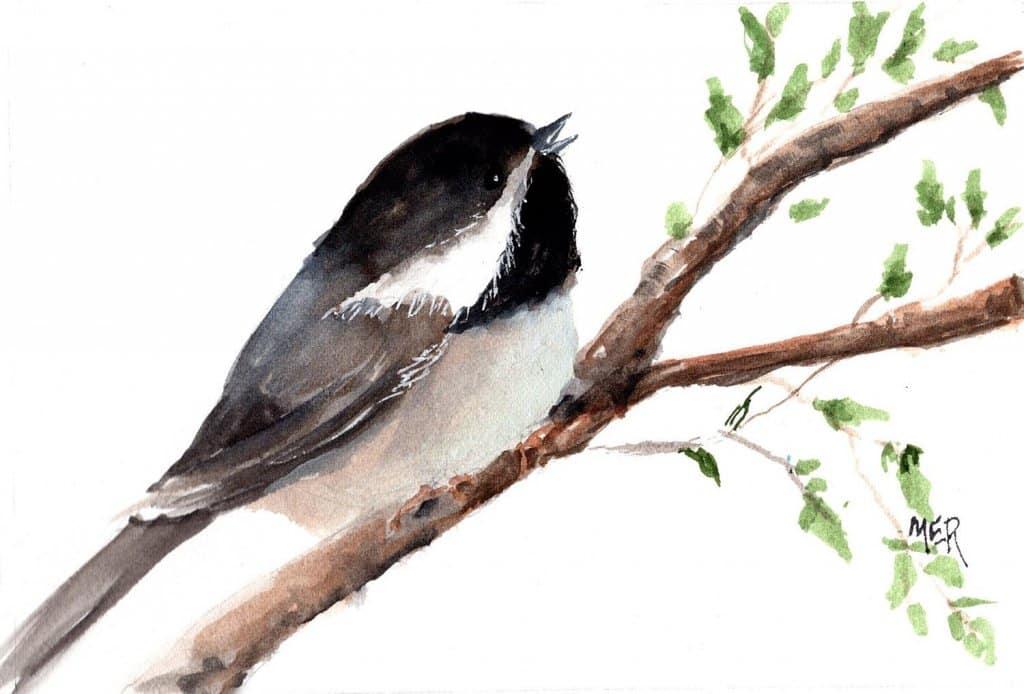 6/8/21 Chickadee Painted using a Pixabay reference image by Avia5. 6.8.21 Chickadee img001