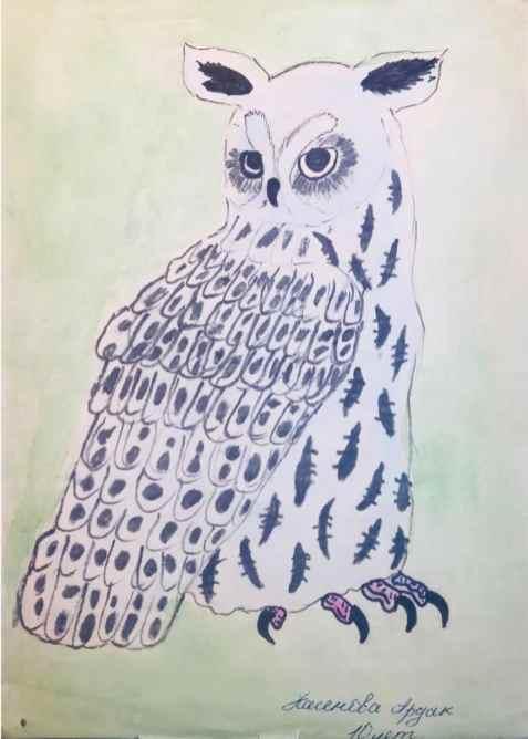 owl drawing at 9 yrs old by Ardak Kassenova