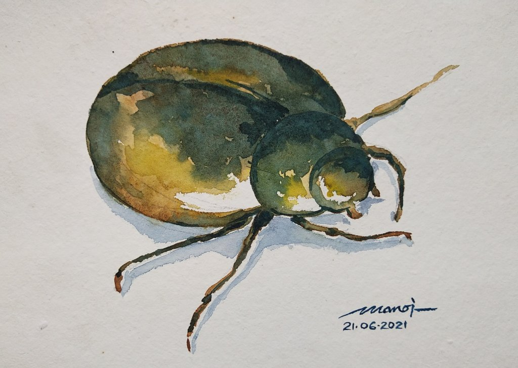 Dt: 21.06.2021 Sub: JUNEBUG Watercolor painting on handmade paper IMG_20210620_233952