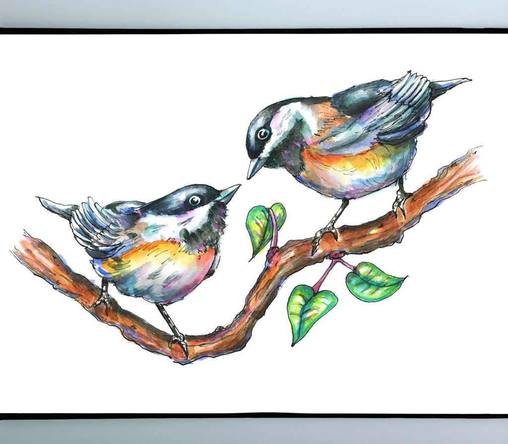 Two Chickadees Love Birds Cute Watercolor Illustration Sketchbook Detail
