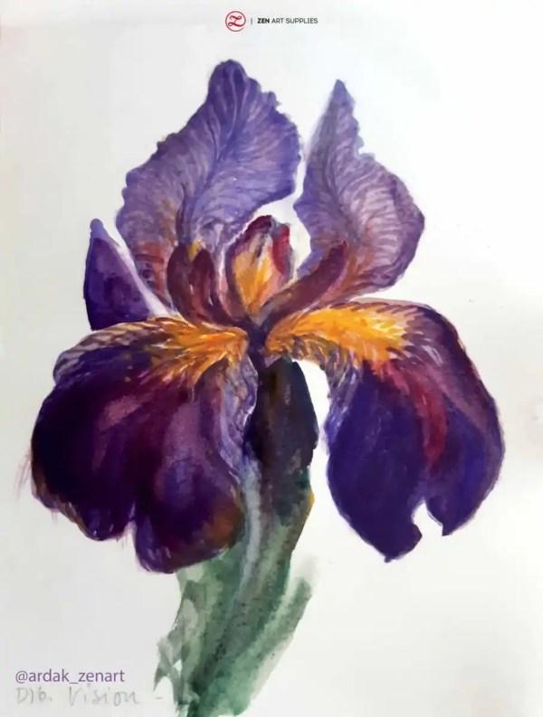 iris finished close up