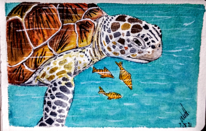 A quick under the sea watercolor…. IMG_20210728_081554514~2_resize_18