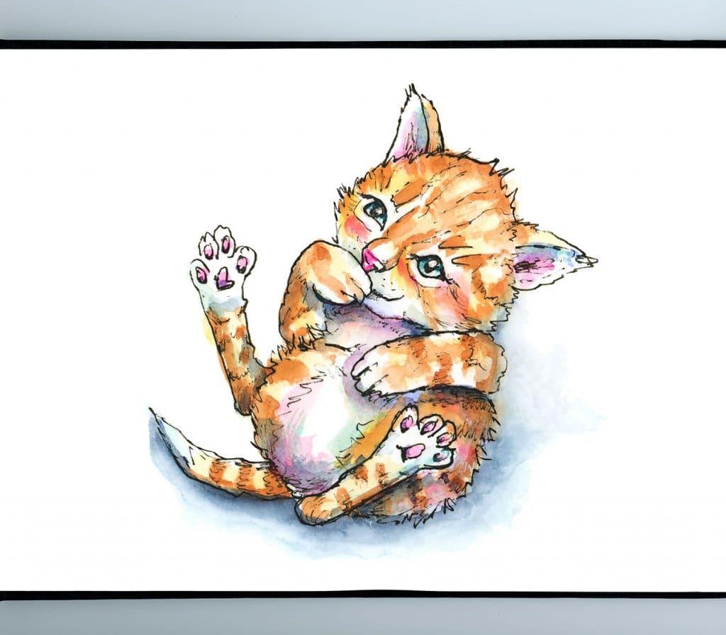 Kitten Cat Being Tickled On Back Watercolor Illustration Painting Sketchbook Detail