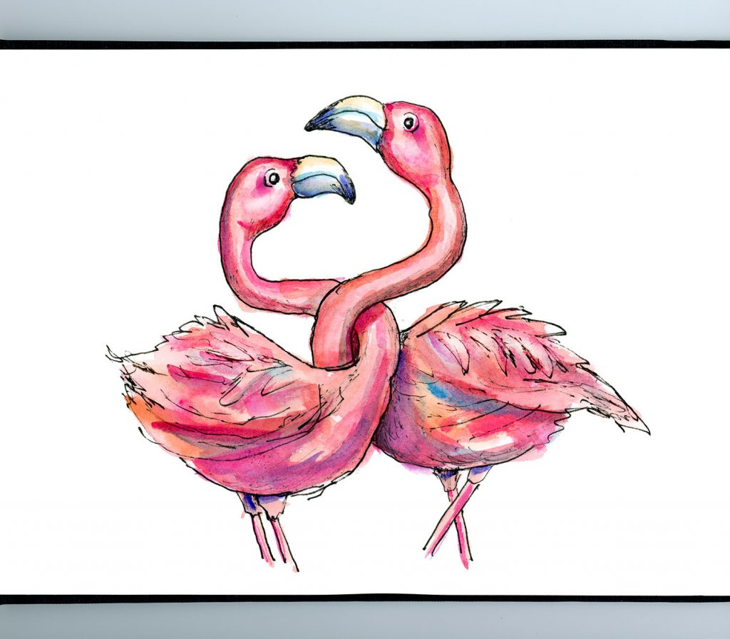 Two Flamingos Necks Entwined Love Watercolor Illustration Painting Sketchbook Detail