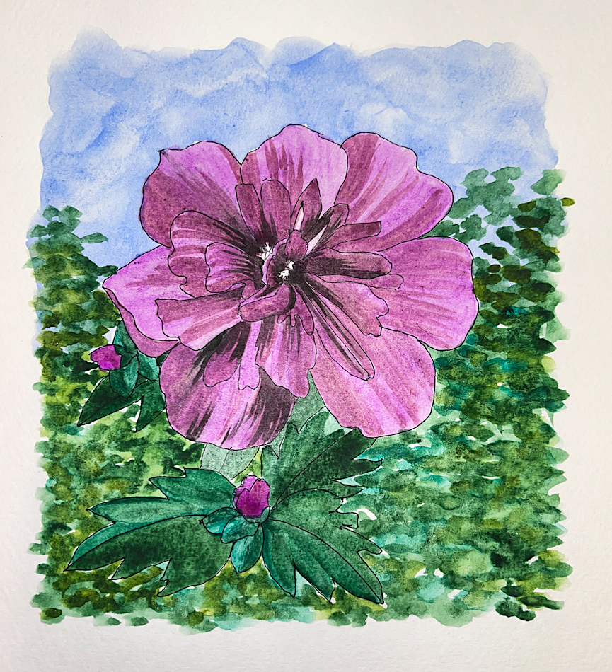 For World Watercolor Month… not keeping up but happy wiht what I can do! W21 7 1 HMSQ ANTION F