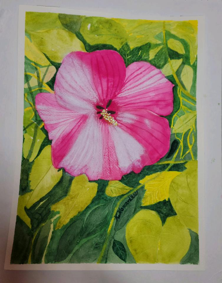 Hibiscus…watercolor with pastel 3496