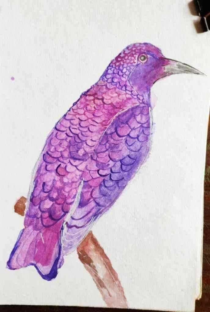 Starling #doodlewashAugust2021 IMG_20210807_152835
