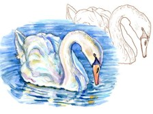 September 2021 Doodlewash Drawing Painting Challenge Main Image