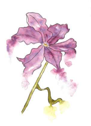 Watercolor bleeding flower