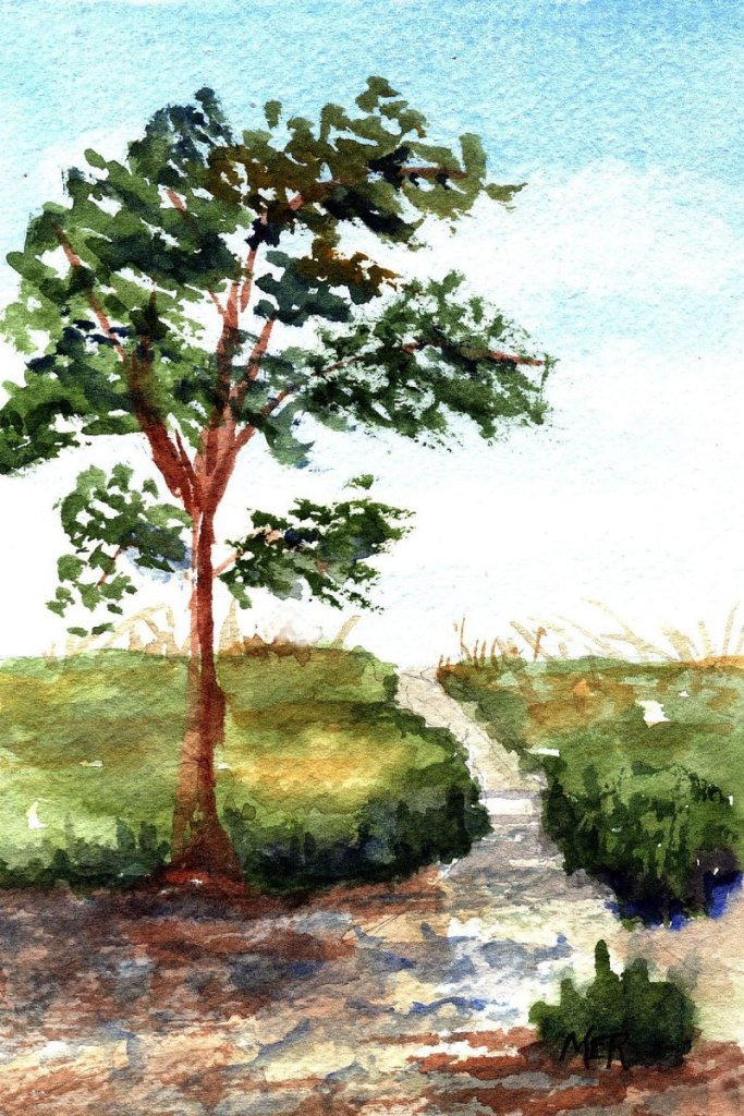 9/19/21 Tree 9.19.21 Tree img001
