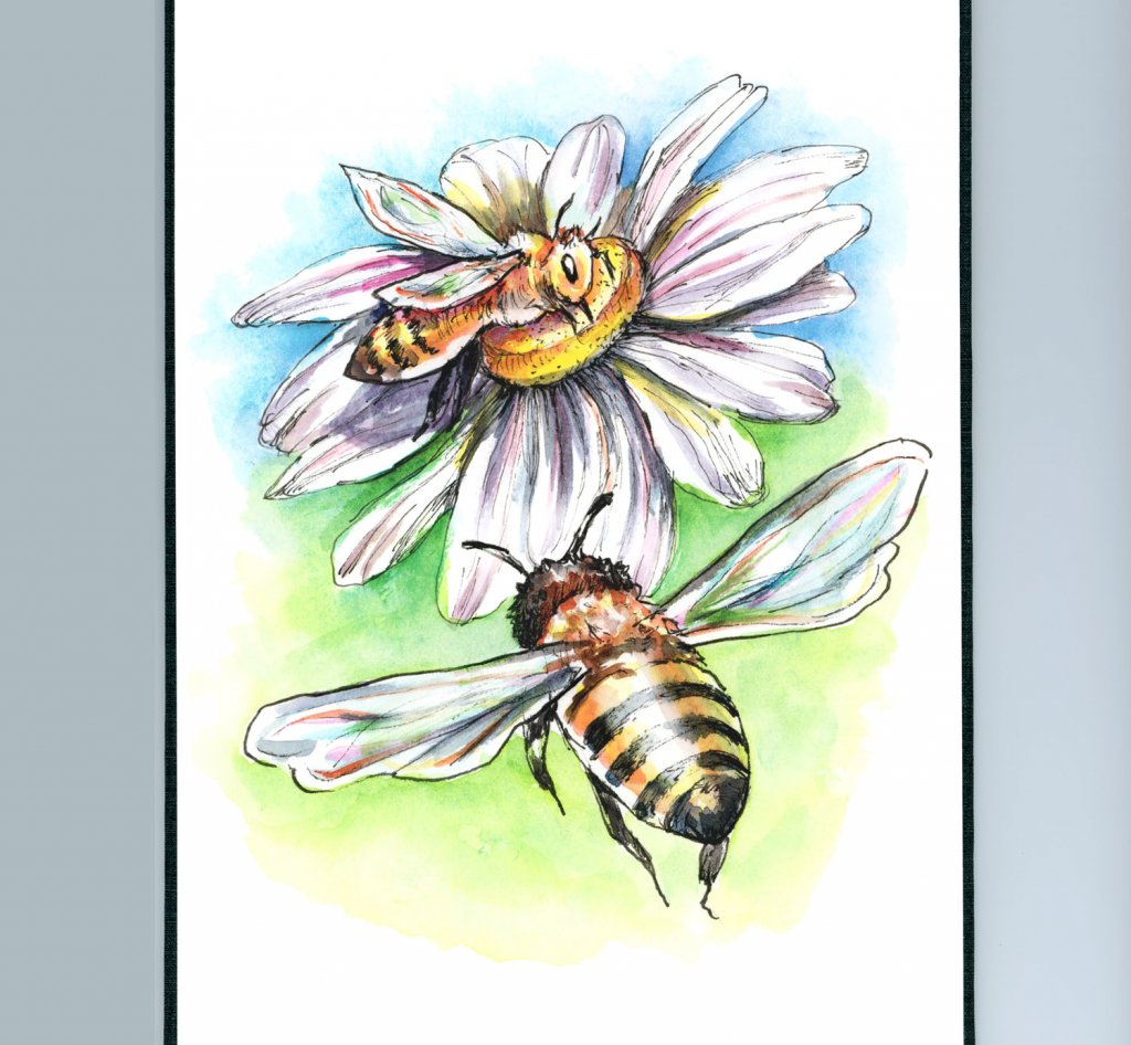 Two Bees And Daisy Flower Watercolor Illustration Painting Sketchbook Detail