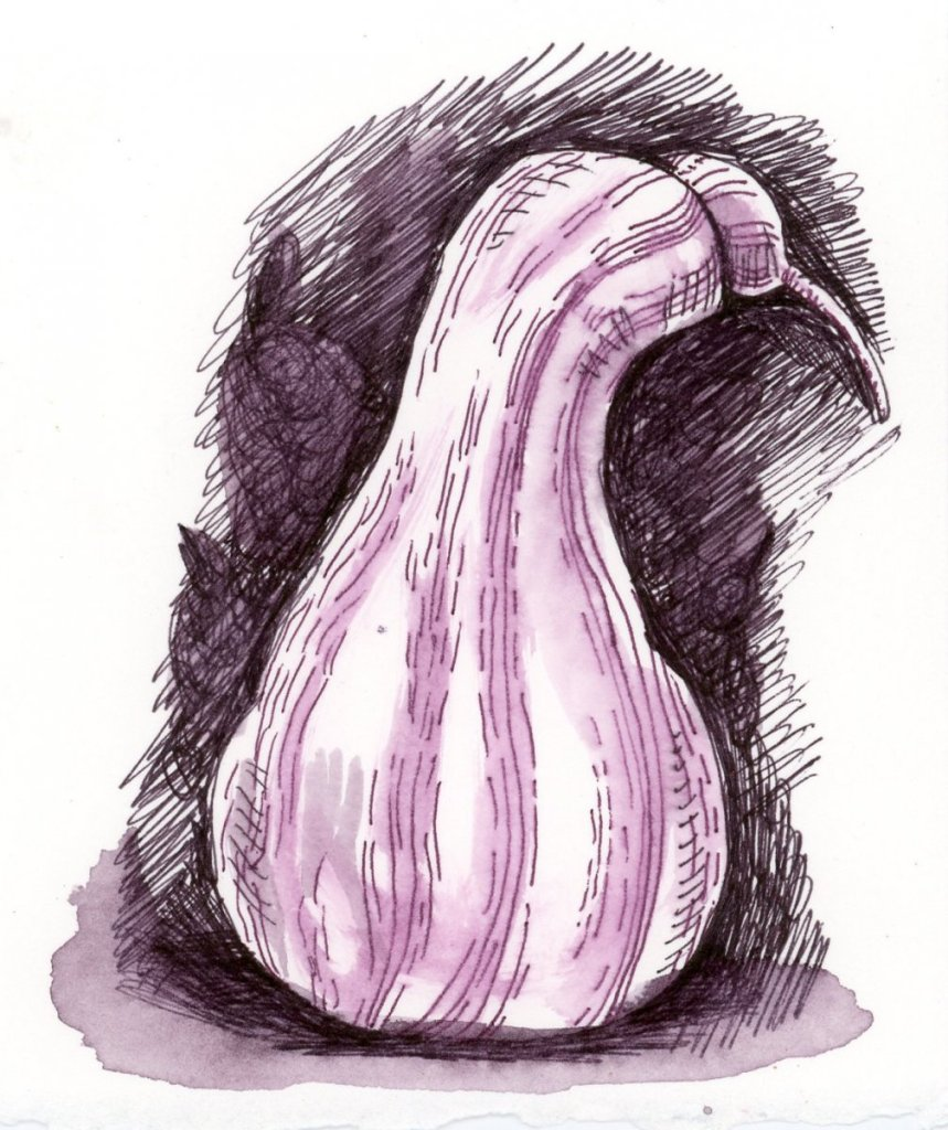 #DoodlewashSeptember2021 Prompt: Squash .A quick sketch to try out some new pens – Zebra Saras