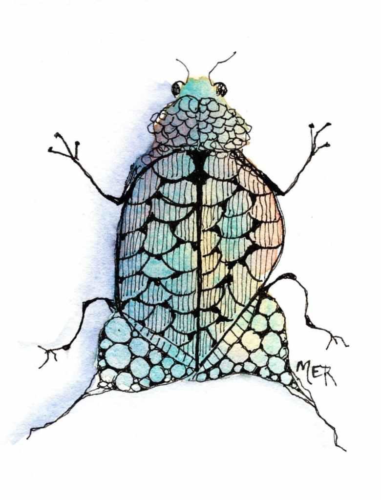 10/14/21 Bug …Doodlebug 10.14.21 Bug img001