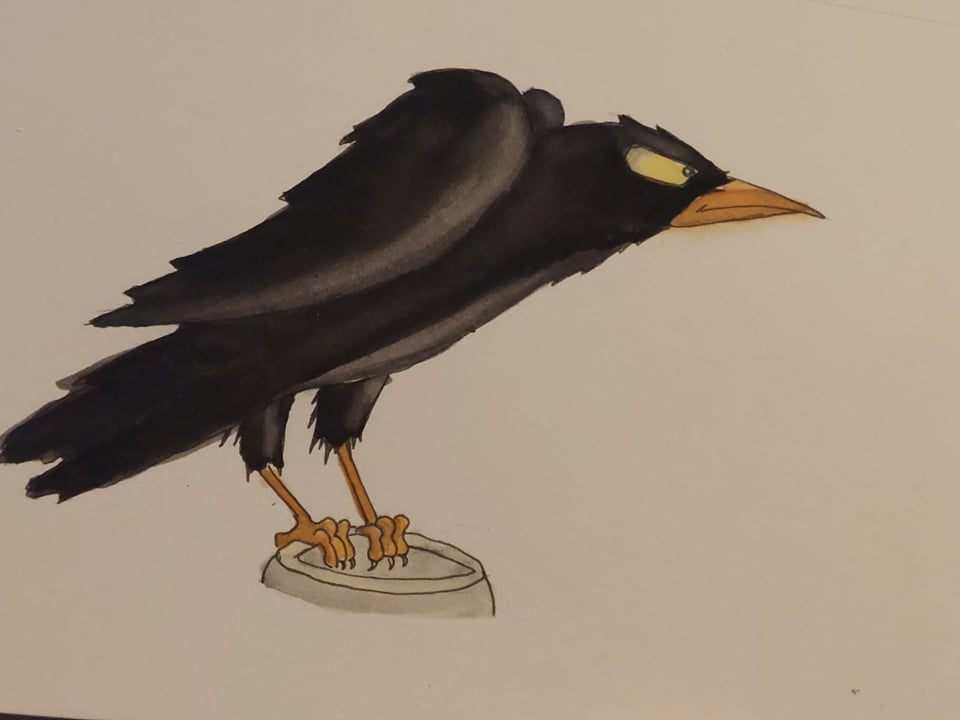 """Day 5 """"Bird"""" Since it's Halloween season I went with the crow from Snow White. Cro"""