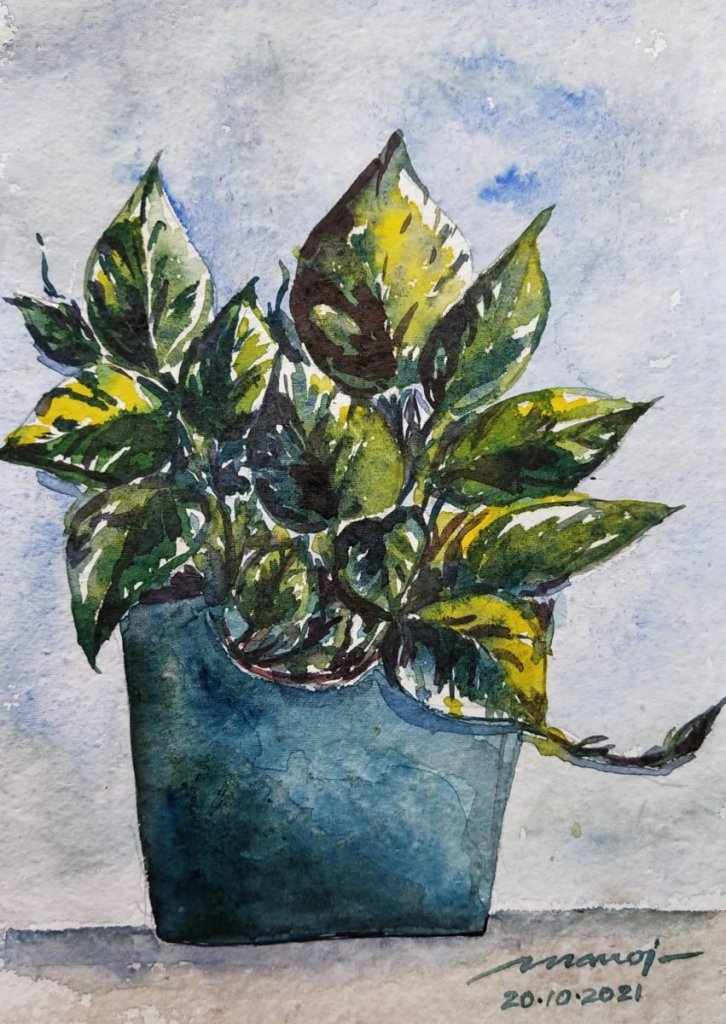 Dt: 20.10.2021 Sub: PLANT Watercolour painting on handmade paper IMG_20211020_090641