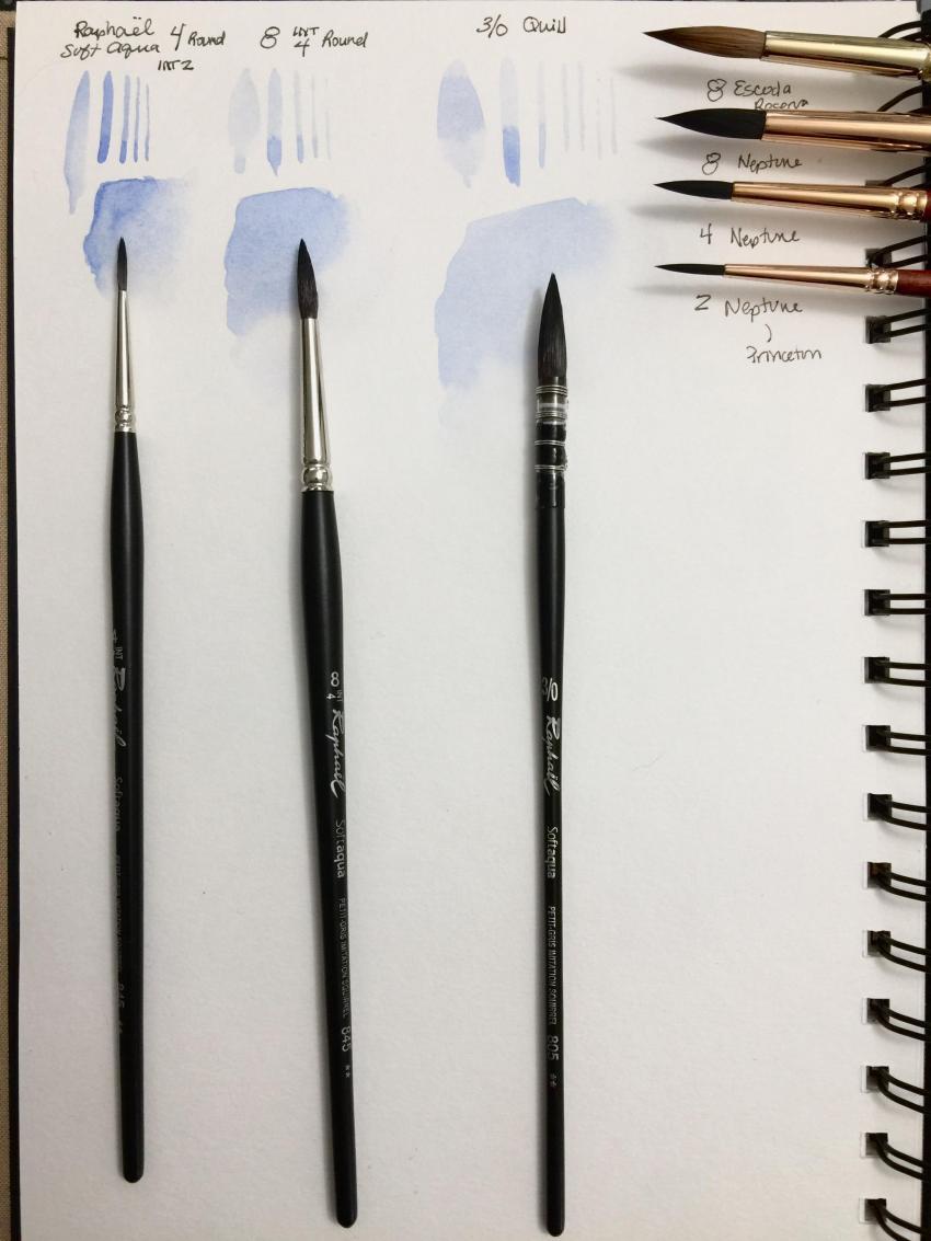 Raphael brushes with Comparison brushes