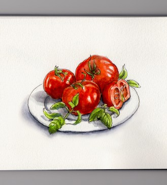 Tomatoes & Fresh Basil on a white plate watercolor sketch and food illustration Doodlewash