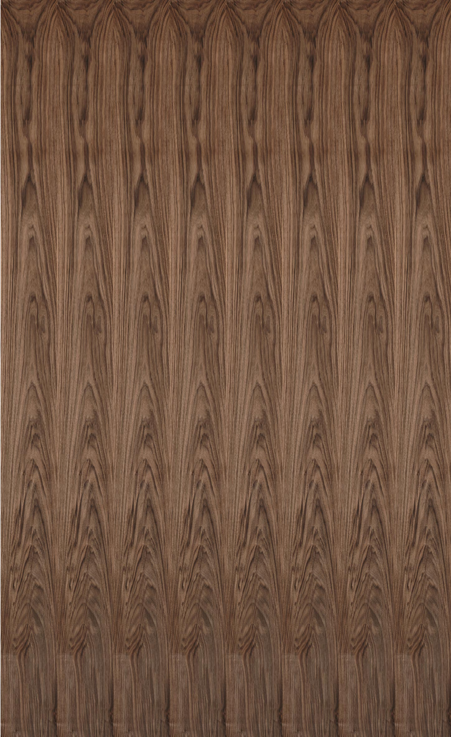 WALNUT EUROPEAN VENEER Dooge Veneers