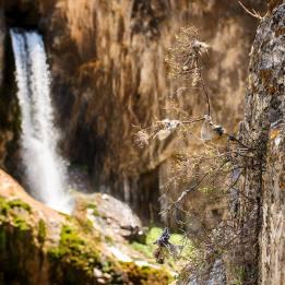 Abshir Ata Falls