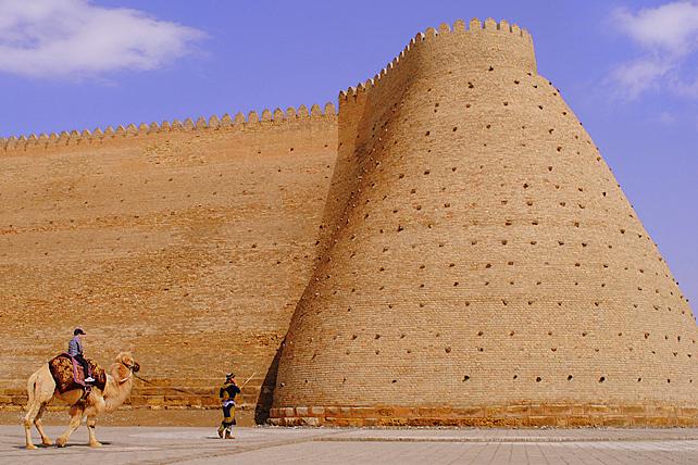 Arc Citadel Wall