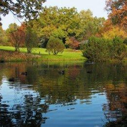 Izmailovsky Park Moscow Lake View
