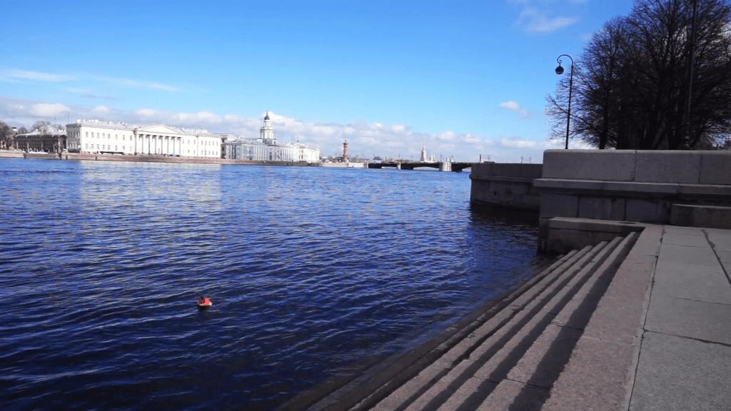 Neva Embankments - River View