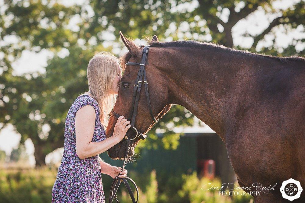 an equine portrait shoot