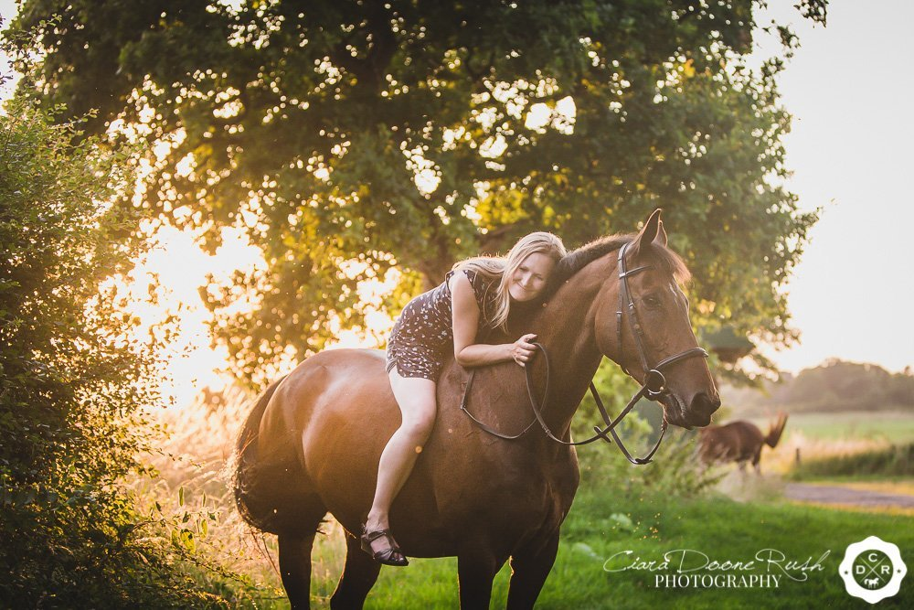 horse and rider in the summer sun