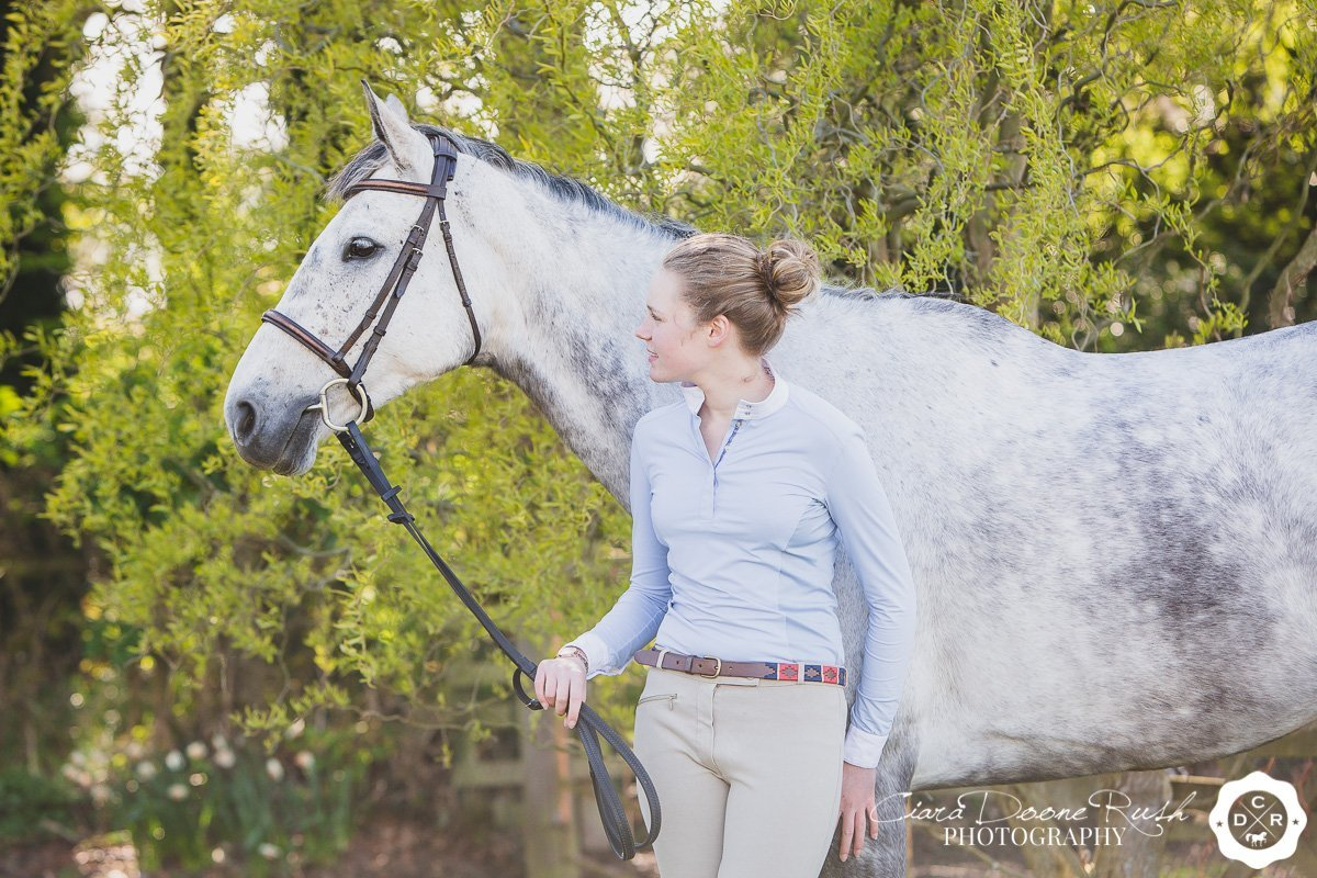 a grey horse on a photo shoot