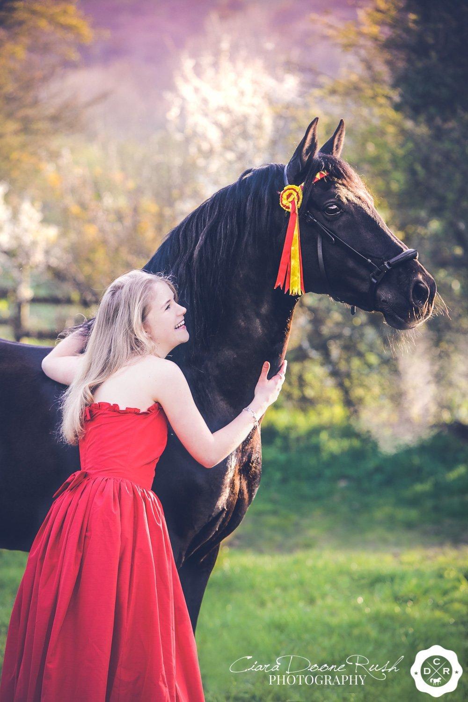 Hero and the stallion